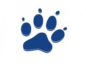 Schweizer Tierschutzverein für Hunde, Bwerneck