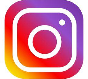 Niemandshunde bei Instagram